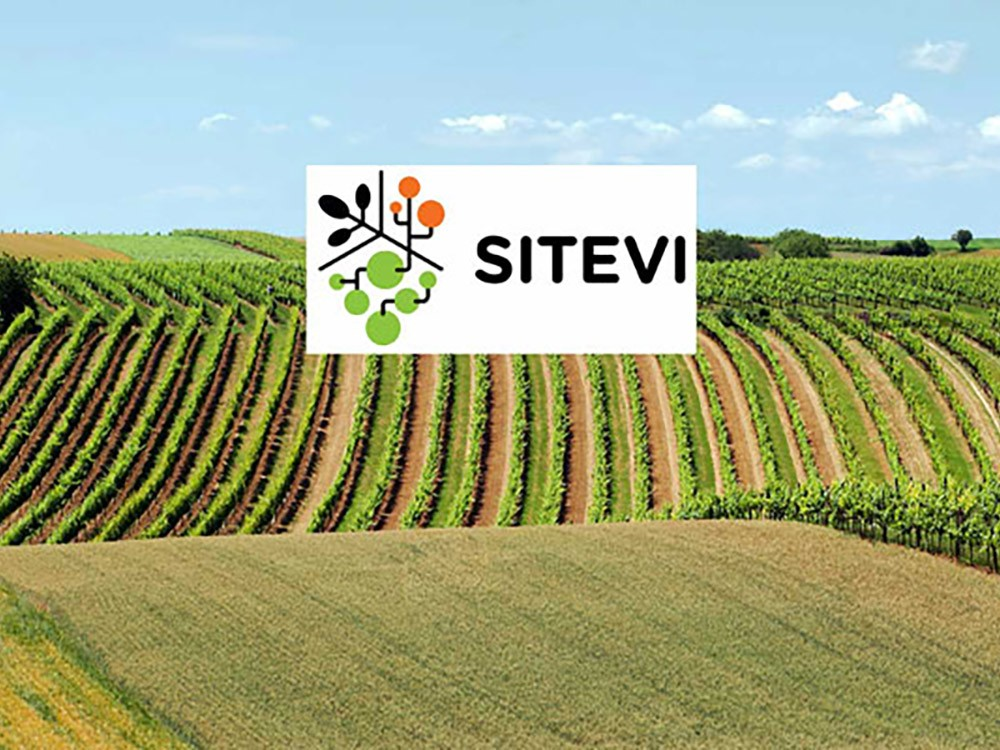 Sitevi - Salon International